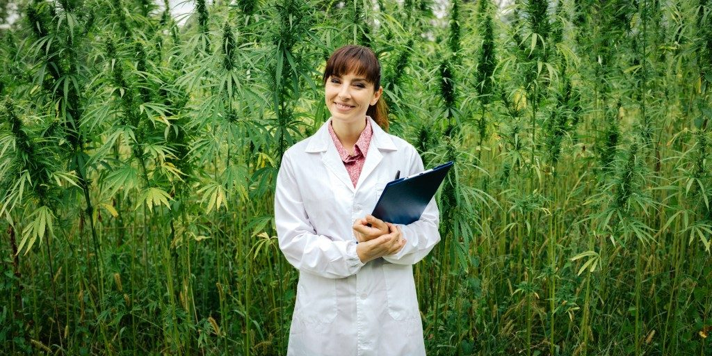 Doctor holding a clipboard in front of a field of herbal medicine
